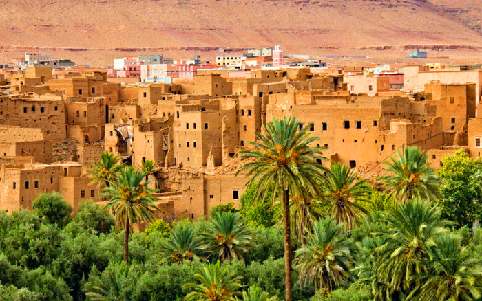 desert tour 6 days from marrakech to oasis of fint